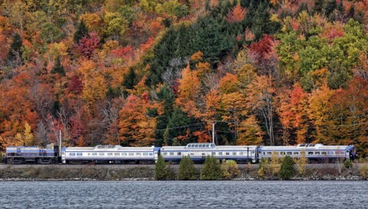 train39621974