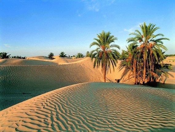 desert6a0148c742d03a970c0147e35210af970b-800wi