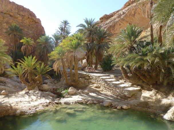 deserttunis2