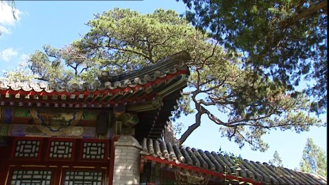 266788816-palais-d'ete-cime-arbre-pekin-ville-toit-architecture